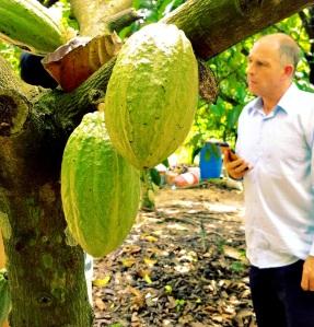 Stefan Struik at a cacao farm